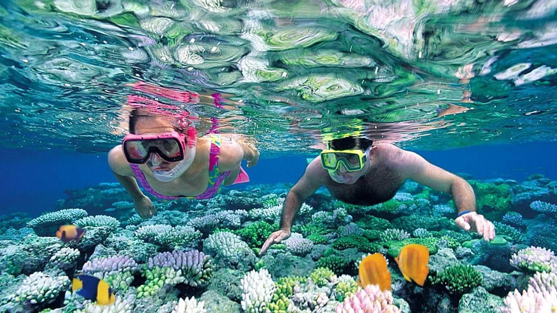Mnemba Atoll'de Şnorkelle Dalma Zanzibar